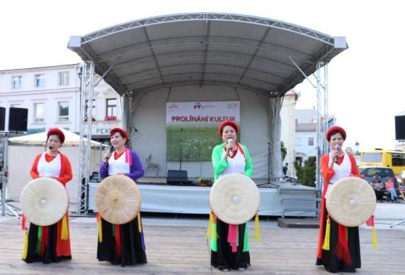 Ba Lan: Người Việt ở Ostrava và Bắc Morava tham gia lễ hội các dân tộc thiểu số